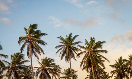 Seguro Saúde Viagem Internacional – Informações, Dicas e Promoções!